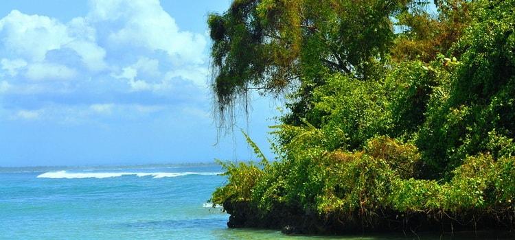 Остров Бали. Индонезия
