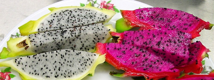 Питахайа. Экзотические фрукты Барселоны