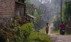 Первые впечатления о Бали